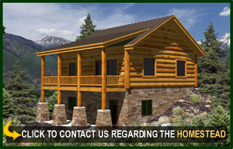 the homestead offers spacious comfort for the couple that seeks the small mountain retreat the 29x29 space has options to accommodate your needs - Mountain Cabin Plans